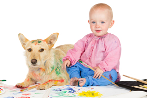 Pet Stain Removal Redondo Beach