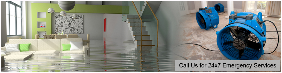 Water Damage Restoration Redondo Beach